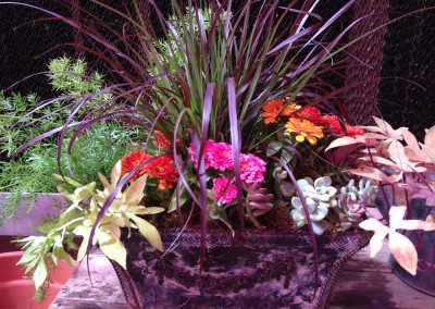 Schmitz Garden Center Container Services