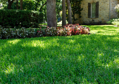 Schmitz-Garden-Center-Landscape-Design-Services (9)
